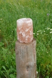 Salzleckstein-Zylinder 3 kg Himalayasalz